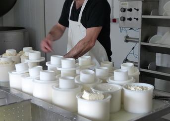 etiquetado de la leche y lácteos