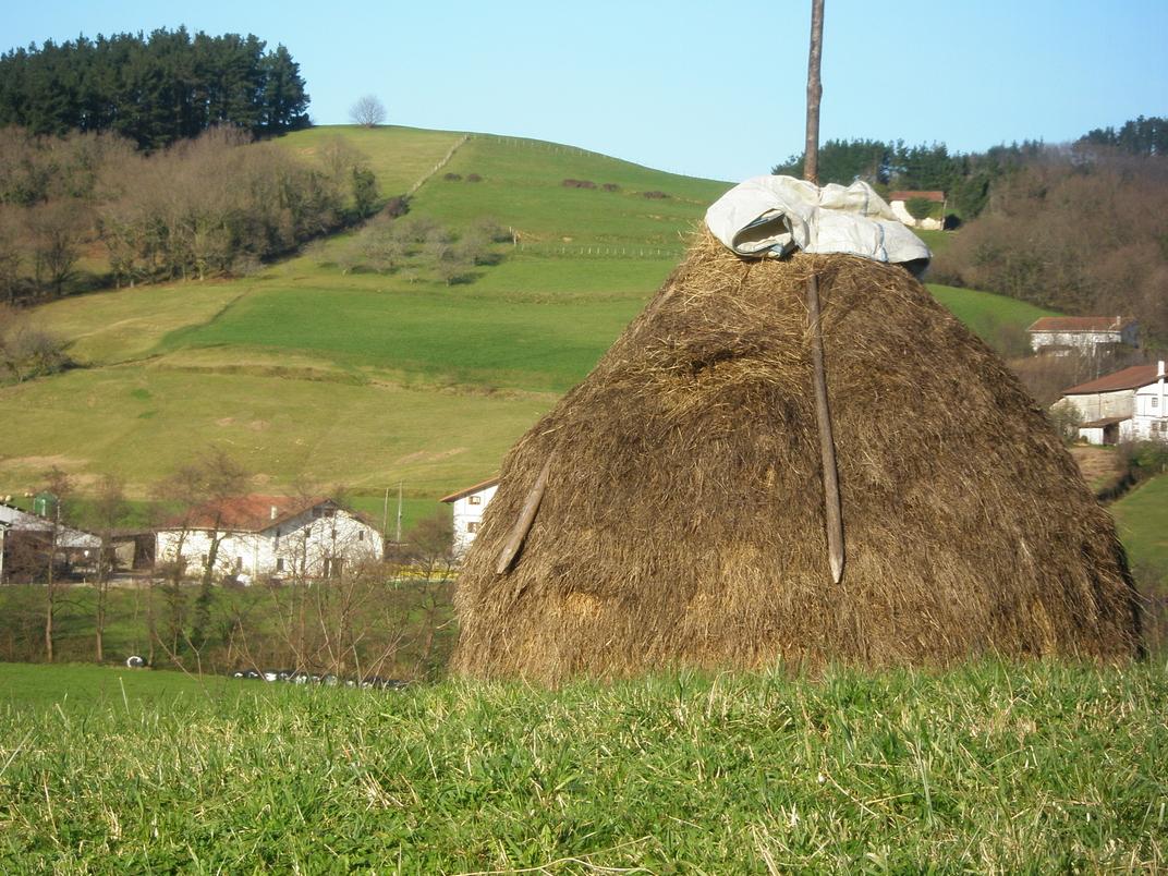 1 de Abril, Jornada sobre el Futuro del Mundo Rural de Euskadi